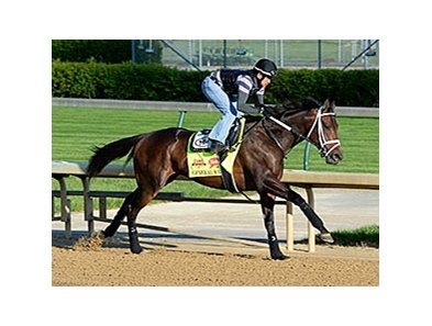 "General a Rod <br><a target=""blank""http://photos.bloodhorse.com/TripleCrown/2014-Triple-Crown/Kentucky-Derby-Workouts/i-2n3547T"">Order This Photo</a>"