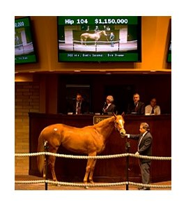 Hip 104 by Giant's Causeway was the Barretts March sale topper.