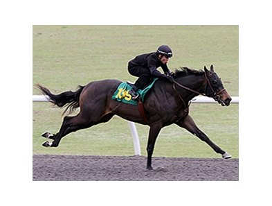 Hip No. 139, a bay colt by first-crop sire Midshipman, sped an eighth of a mile in :09 4/5 to post the fastest work of the day at the distance.