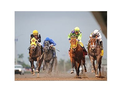 The Florida Derby