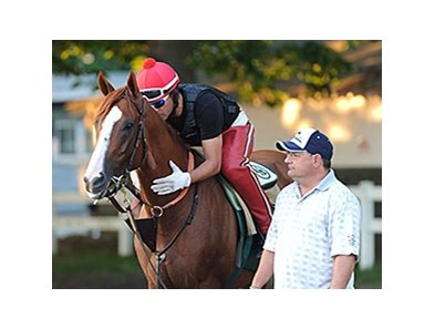 "California Chrome<br><a target=""blank"" href=""http://photos.bloodhorse.com/TripleCrown/2014-Triple-Crown/Belmont-Stakes-146/i-4bz5HFC"">Order This Photo</a>"