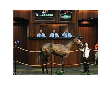 Hip No. 539, a Rockport Harbor filly, brought $210,000 at the second session of Ocala Breeders' Sales Co.'s June 2-year-olds in training and horses of racing age sale.