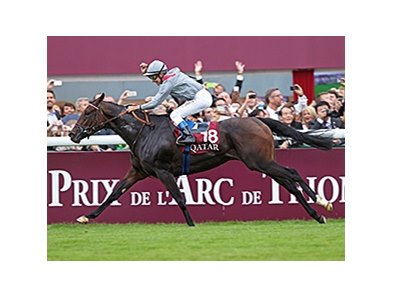 Treve wins the Prix de l'Arc de Triomphe.