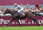 "Treve shared top honors with Black Caviar.<br><a target=""blank"" href=""http://photos.bloodhorse.com/AtTheRaces-1/at-the-races-2013/27257665_QgCqdh#!i=2814130822&k=hH49sZs"">Order This Photo</a>"