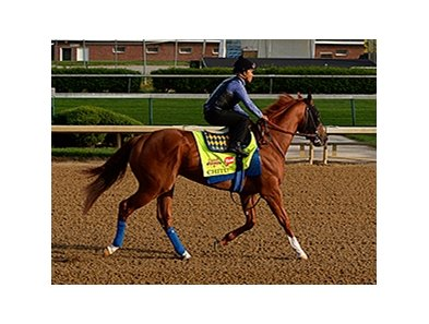 Chitu warms up at Churchill Downs April 27.