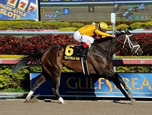 Kauai Katie Romps in Forward Gal