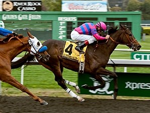 Summer Hit won the 2013 All American Handicap.