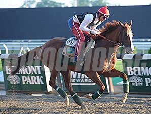 California Chrome galloped at Belmont on May 25.