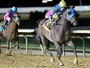 In the Fairway, a 4yo WV-bred Posse colt bred and owned by Jeff and Susan Runco's Coleswood Farm, won the Confusion Say Stakes at Charles Town April 19. Runco trains the colt, who has earned more than $300,000 in 16 starts, 15 of them at Charles Town.