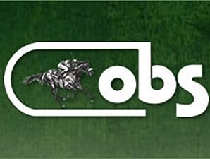 OBS August Yearling Sale Catalog Posted