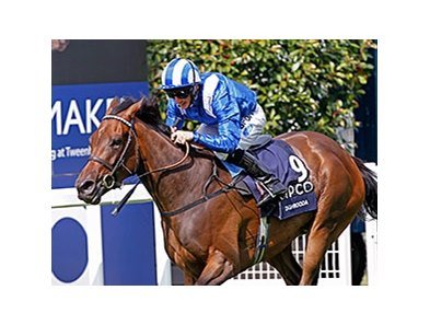 "Taghrooda is perfect in four career starts.<br><a target=""blank"" href=""http://photos.bloodhorse.com/AtTheRaces-1/At-the-Races-2014/i-b9mtx9h"">Order This Photo</a>"