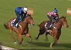 Cox Plate: Rob Heathcote - Trainer of Buffering
