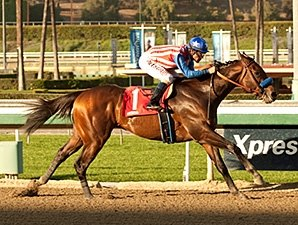 Bayern Takes Oaklawn Spin for Arkansas Derby