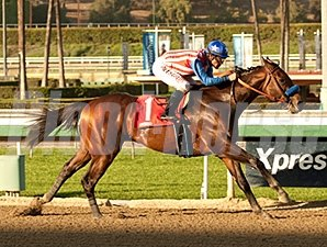Bayern overwhelmed a $58,000 allowance test at Santa Anita, winning by 15 lengths.