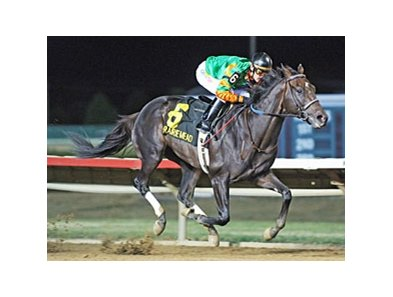 Golden Ticket won his only previous Prairie Meadows start, the 2013 Prairie Meadows Handicap.