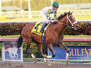 Mucho Macho Man Works at Gulfstream Park