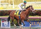 "Mucho Macho Man<br><a target=""blank"" href=""http://photos.bloodhorse.com/AtTheRaces-1/At-the-Races-2014/35724761_2vdnSX#!i=3029254633&k=4cPQTTG"">Order This Photo</a>"