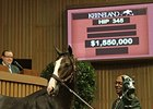 This Unbridled's Song colt brought a final bid of $1.6 million.