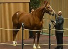 Life Happened, the dam of grade II winner Vyjack, was purchased for $750,000 on Jan. 6.
