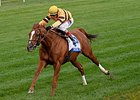 "Wise Dan flies home to win the Shadwell Turf Mile.<br><a target=""blank"" href=""http://photos.bloodhorse.com/AtTheRaces-1/At-the-Races-2014/i-sZVMrVG"">Order This Photo</a>"