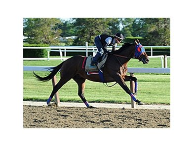 Social Inclusion