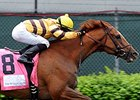 "Wise Dan will likely start next in the Firecracker Handicap.<br><a target=""blank"" href=""http://photos.bloodhorse.com/AtTheRaces-1/at-the-races-2013/27257665_QgCqdh#!i=2499233818&k=34cPLQr"">Order This Photo</a>"