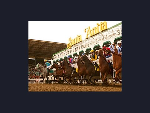 Tvg horse betting santa anita matched betting calculator iphone tricks
