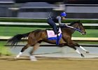 Kentucky Derby News Upate for April 27, 2014