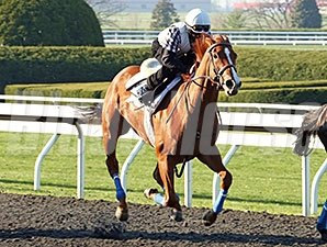Rosalind worked five furlongs in :58 4/5 over the Lexington Polytrack on April 19.