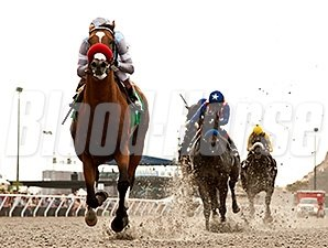 Goldencents won the 2014 Pat O'Brien Stakes.