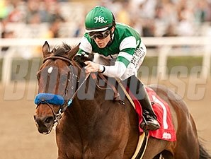 Iotapa won the 2014 Santa Maria Stakes.