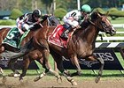 "Palace leaves Happy My Way behind to take the Alfred G. Vanderbilt.<br><a target=""blank"" href=""http://photos.bloodhorse.com/AtTheRaces-1/At-the-Races-2014/i-wpPnH78"">Order This Photo</a>"