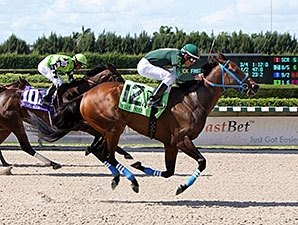 Grand Tito Takes Off-the-Turf Miami Mile