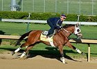 "Harry's Holiday breezed five furlongs at Churchill Downs on April 26, 2014.  <br><a target=""blank"" href=""http://photos.bloodhorse.com/TripleCrown/2014-Triple-Crown/Kentucky-Derby-Workouts/i-dsFTdPp"">Order This Photo</a>"