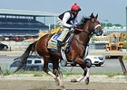 "Wicked Strong<br><a target=""blank"" href=""http://photos.bloodhorse.com/TripleCrown/2014-Triple-Crown/Belmont-Stakes-146/i-bwZCbRJ"">Order This Photo</a>"