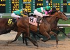 Ive Struck a Nerve (#8) comes out on top after a wild finish in the Risen Star.