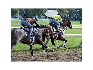 "Tonalist (right) worked with Life in Shambles on August 16.<br><a target=""blank"" href=""http://photos.bloodhorse.com/AtTheRaces-1/At-the-Races-2014/i-pgQPhRH"">Order This Photo</a>"