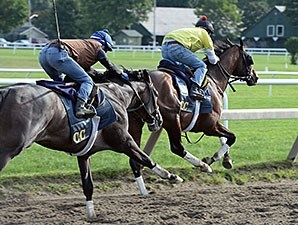 Tonalist (right) worked with Life in Shambles on August 16.
