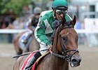 New York-Breds Could Continue Strong Year