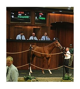 Hip No. 630, a colt by Curlin, was one of two to bring $700,000 at the third session of OBS spring sale of 2-year-olds in training.