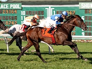 Summer Front begins his 5-year-old campaign in the Ft. Lauderdale Stakes.