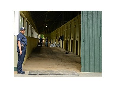 Team O'Neill members set up I'll Have Another's stall as NYRA security monitors those entering and exiting Barn 2.
