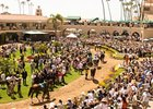 Del Mar's 2009 attendance is up over last year.