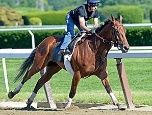Beholder, Close Hatches Work for Ogden Phipps