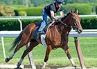 Beholder breezes at Belmont Park June 2.