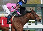 La Verdad won the 2014 Distaff Handicap.