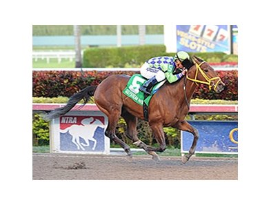 "Wildcat Red<br><a target=""blank"" href=""http://photos.bloodhorse.com/AtTheRaces-1/At-the-Races-2014/35724761_2vdnSX#!i=3053786949&k=bmkwg83"">Order This Photo</a>"