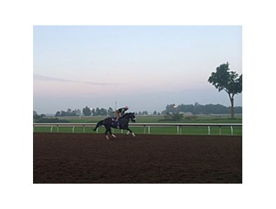 Keeneland's dirt surface Aug. 28