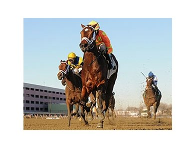 "Fierce Boots cannot be caught in the Busanda Stakes.<br><a target=""blank"" href=""http://photos.bloodhorse.com/AtTheRaces-1/At-the-Races-2014/35724761_2vdnSX#!i=3005634457&k=5kZ8qb5"">Order This Photo</a>"