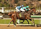 Blingo gets by Imperative to win the San Antonio Stakes.